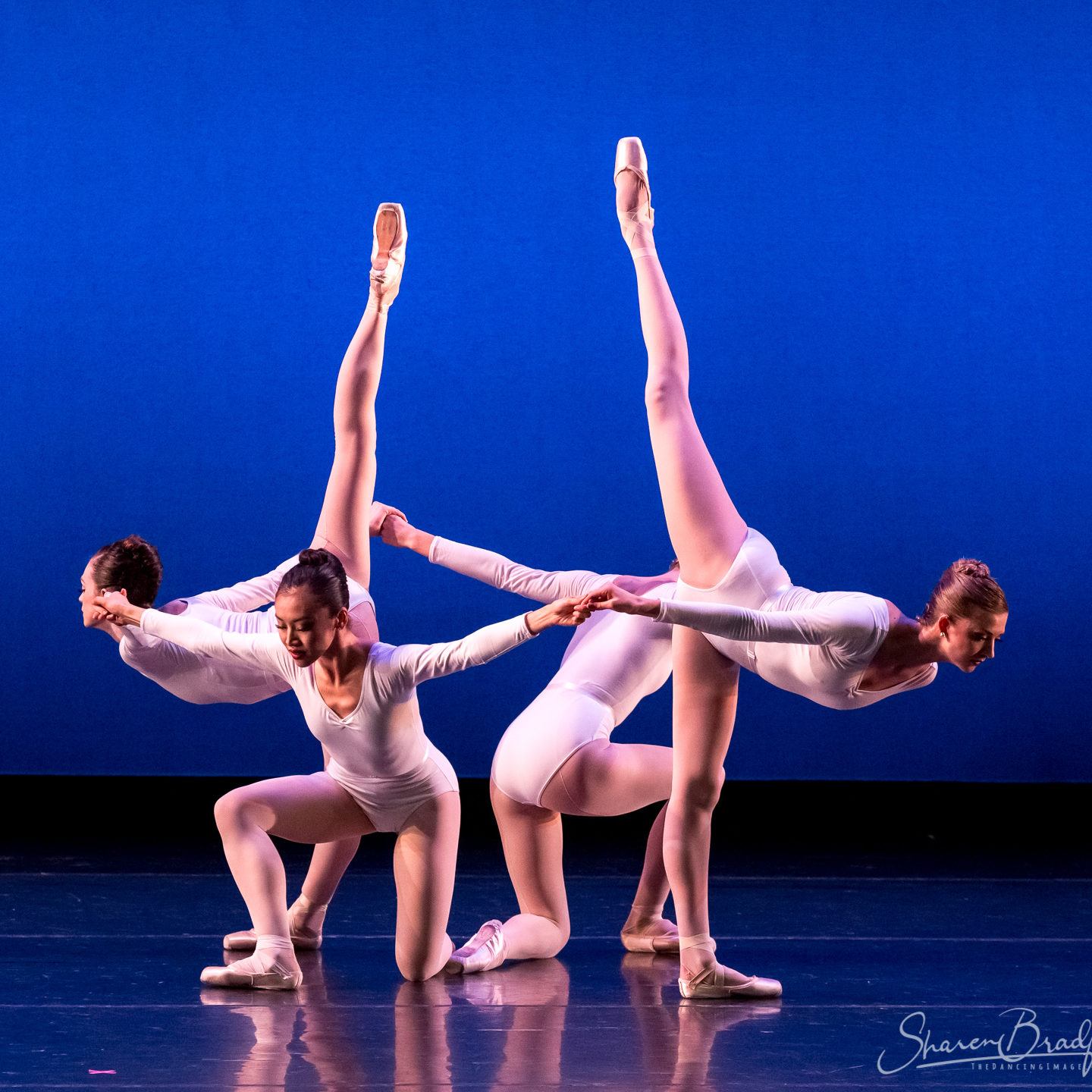 Let's TACAbout It: Avant Chamber Ballet @ Avant Chamber Ballet